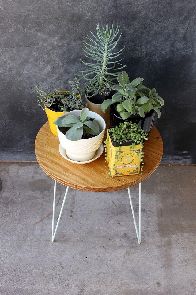 Succulent Plant Stand DIY