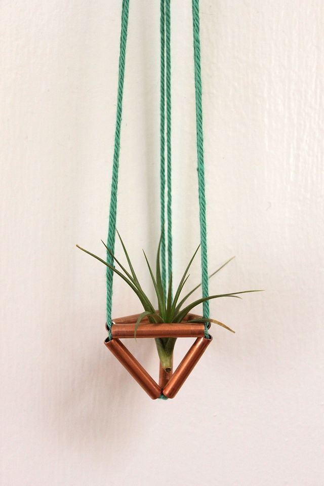 Tiny Copper Air Plant Holder