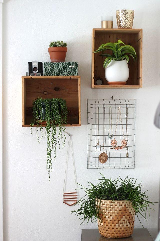 Bedroom Plants 23