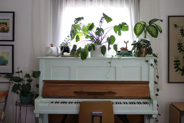 Plant Stand Piano