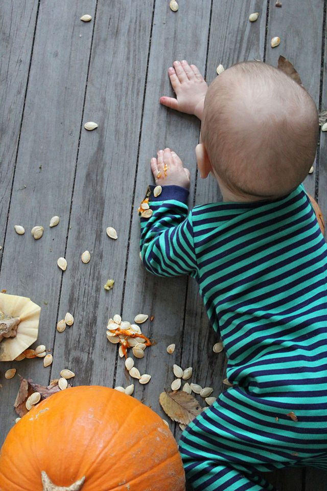 Pumpkin All Over